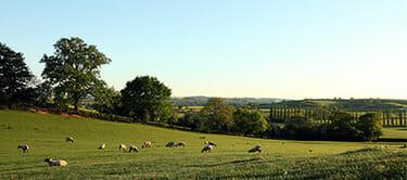 northamptonshire countryside