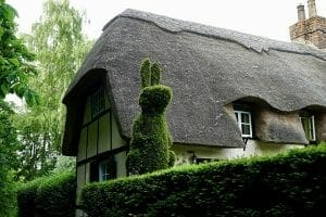 thatched country home